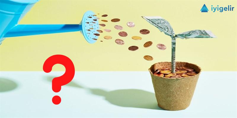 yatırım nedir