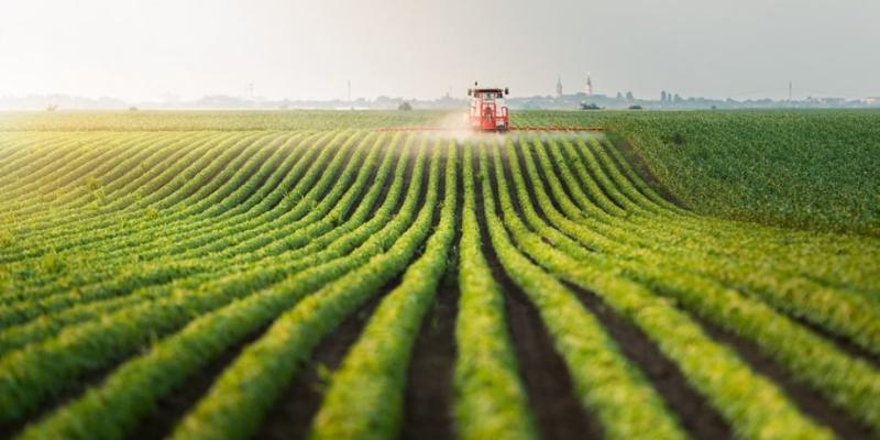 Yükselen Gıda Fiyatlarını Kazanca Dönüştürün: Tarıma Dayalı Yatırım Fonları